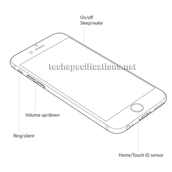 iPhone 6 vs. iPhone 6 Plus vs. iPhone 5s: Specs shootout